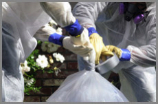 industrial lead paint removal Garden Grove CA